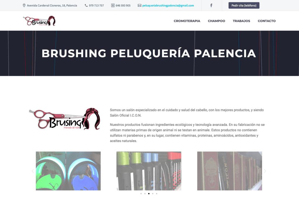 Brushing Peluquería Palencia