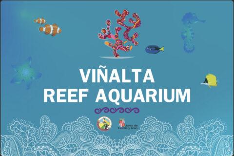 Viñalta Reef Aquarium
